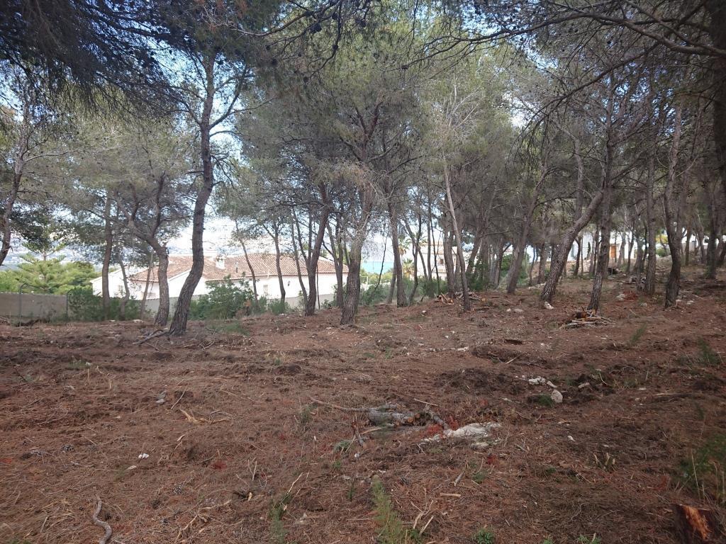 Photogallery - 4 - Build a villa in Moraira: villas for sale in Moraira