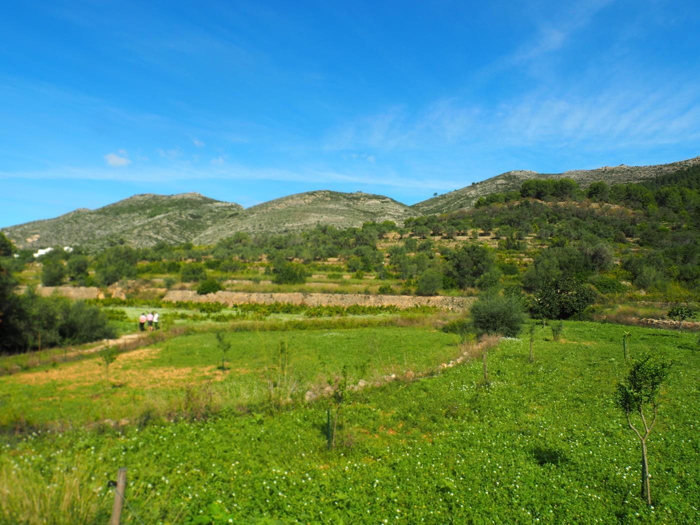 plot en xalojalon · rural-area 160000€