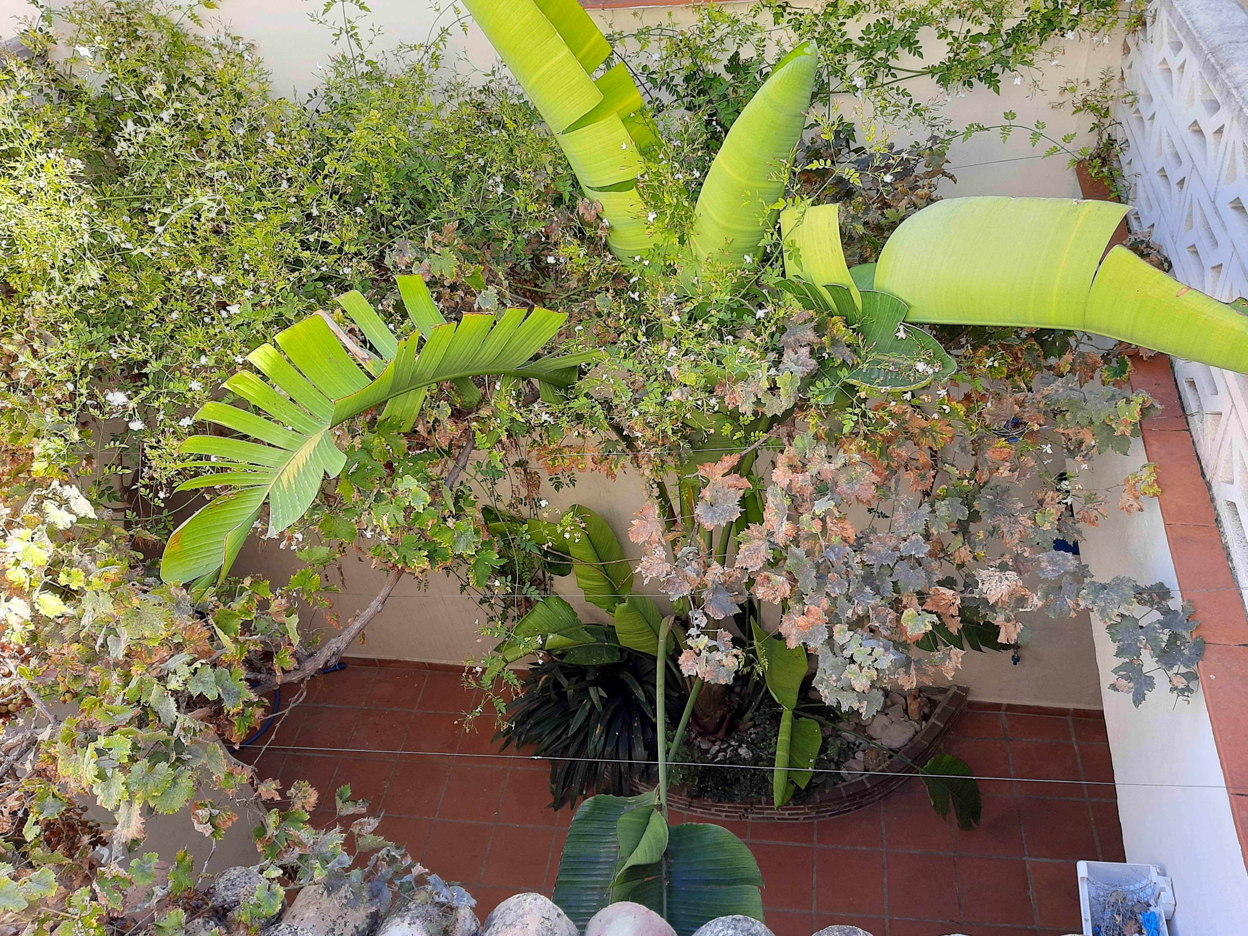 Fotogalería - 3 - Olea-Home | Real Estate en Orba y Teulada-Moraira |