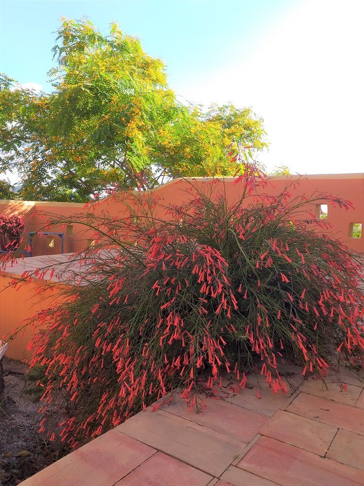 Fotogalería - 49 - Olea-Home | Real Estate en Orba y Teulada-Moraira |