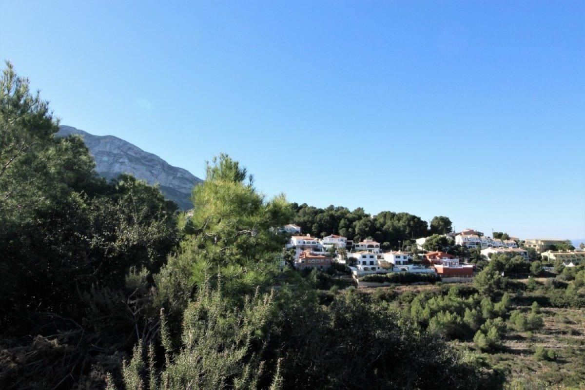 Fotogalería - 5 - Vives Pons Homes